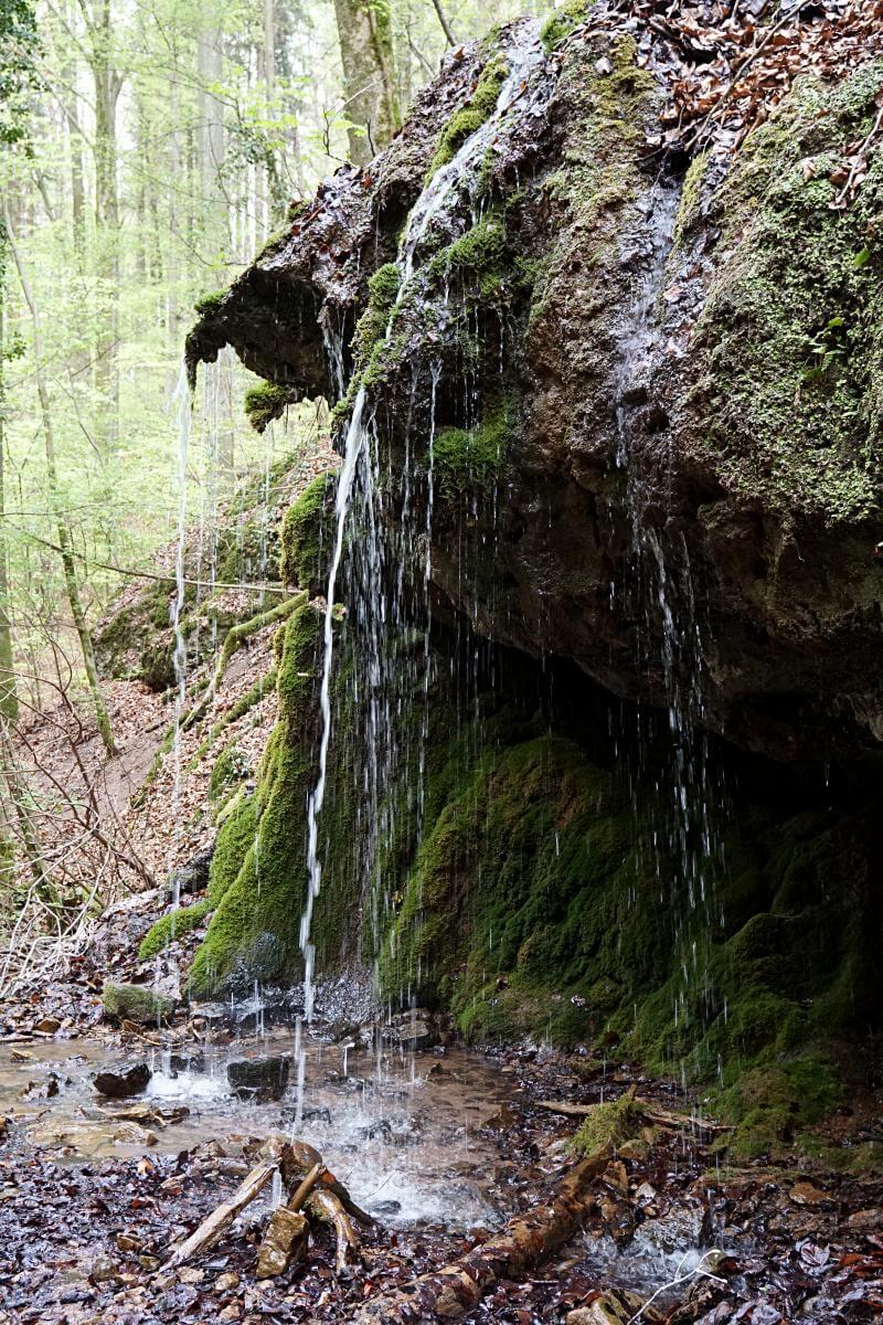 Ein kleiner Wasserfall bildet sich durch das aus dem Kalksbrunnen fließende Quellwasser