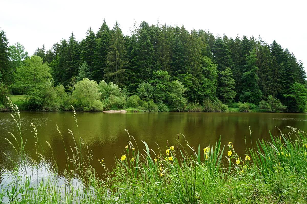 Huettenbuehlsee auf dem Muehlenwanderweg