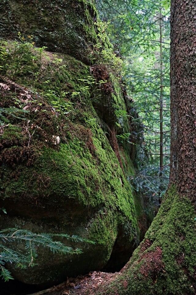 Brunnenklinge Schwäbischer Wald Gschwend