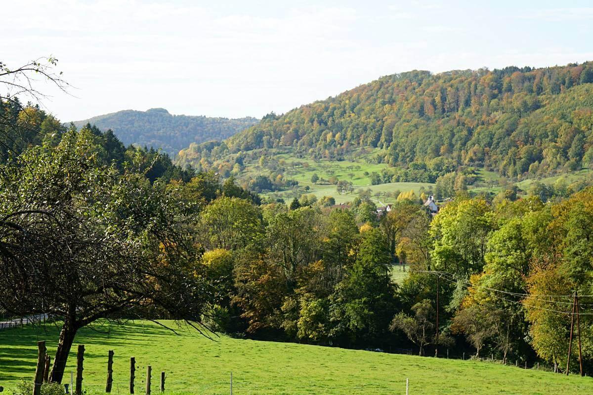 Schwaebischer Wald Landschaft