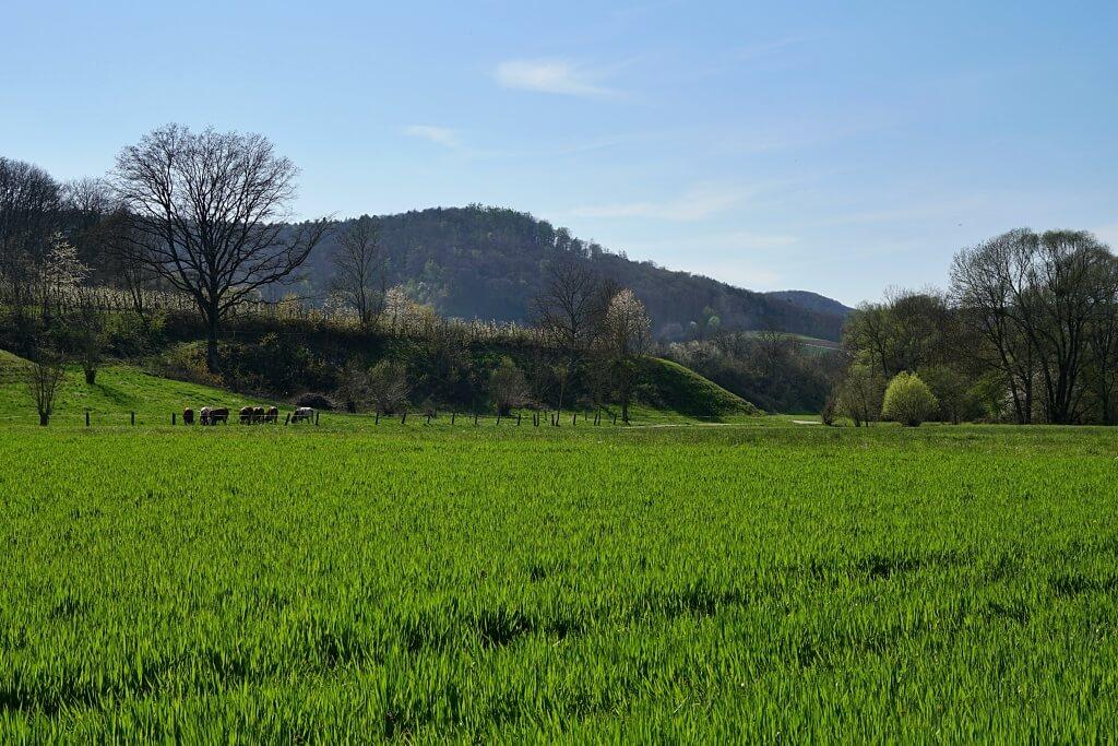 Auf dem Radweg durch das Steinbacher Tal wandern wir nach Untersteinbach