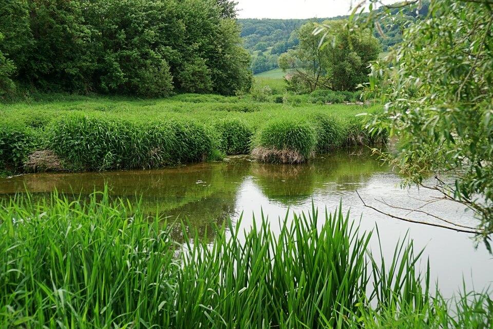 Die Jagst in Unterregenbach in Hohenlohe