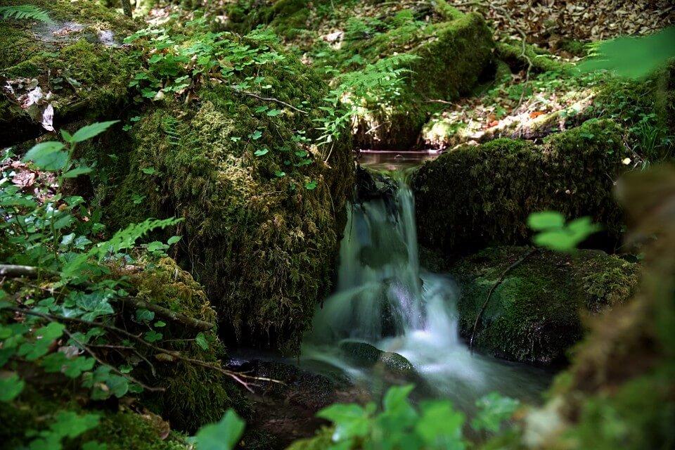 Wanderung Bernbachtal zwischen Loewenstein und Wuestenrot