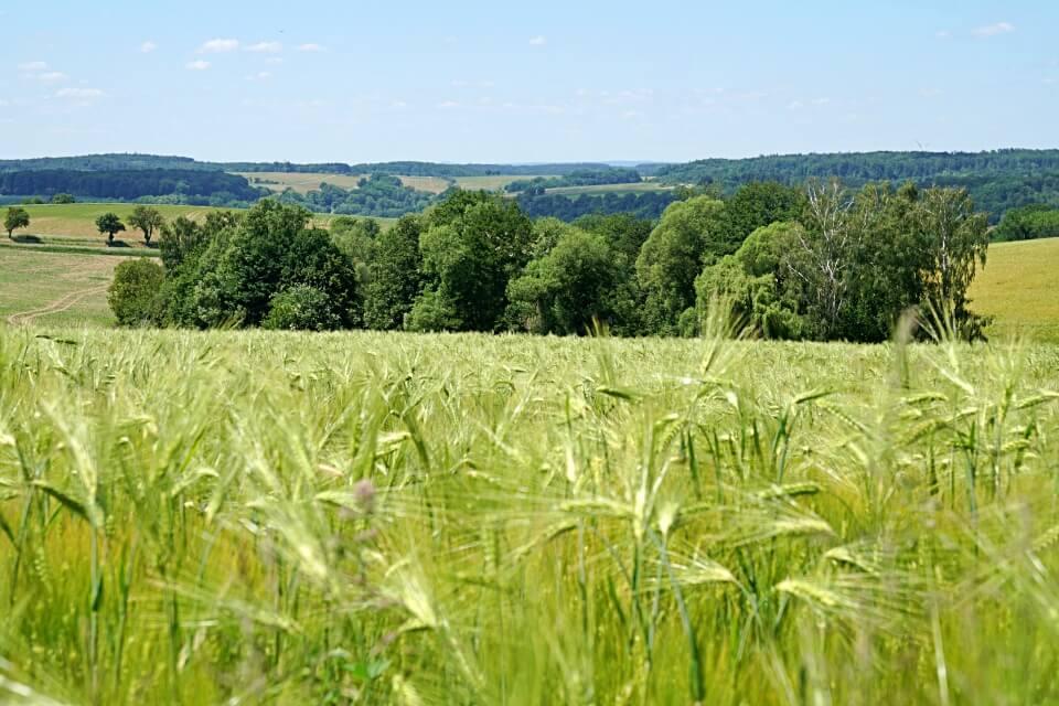 Ausblick auf Hohenlohe von Neusass bei Kloster Schoental