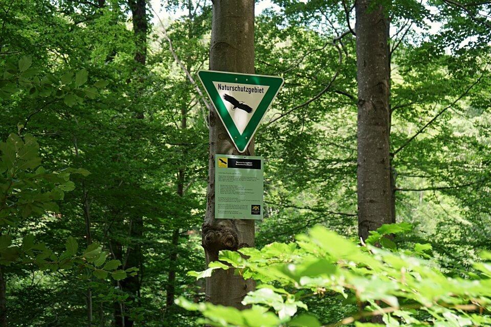 Naturschutzgebiet Bodenbachschlucht bei Wuestenrot im Schwaebisch Fraenkischen Wald