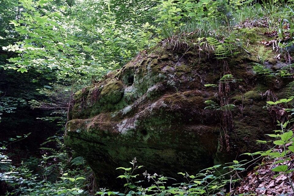 Felsen in der Bodenbachschlucht