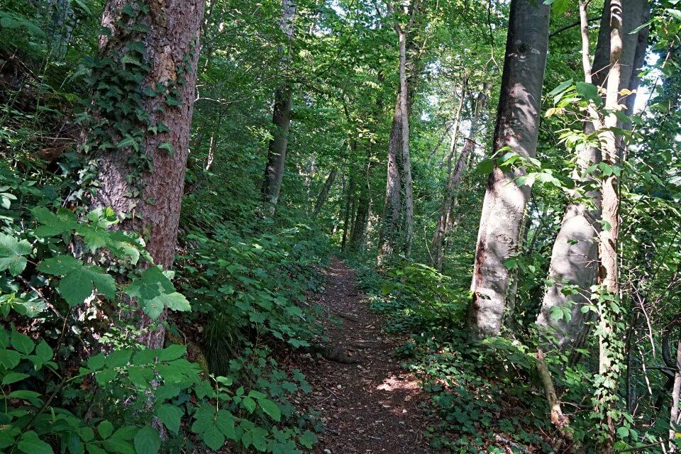 Jagststeig bei Kirchberg in Hohenlohe