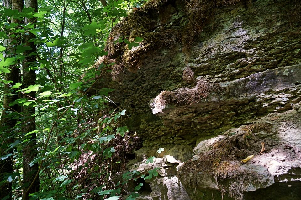 Muschelkalk beim Wandern im Gronachtal in Hohenlohe