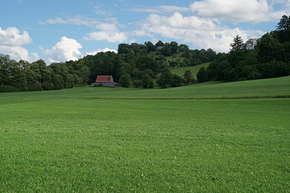 Die Tannenburg im Buehlertal