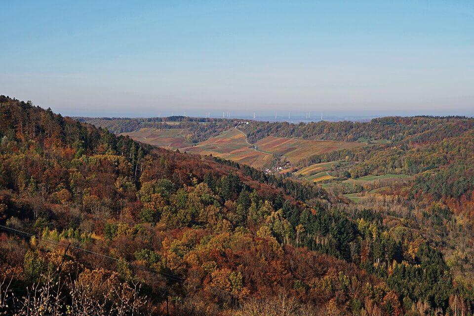Ausblick von Burg Maienfels