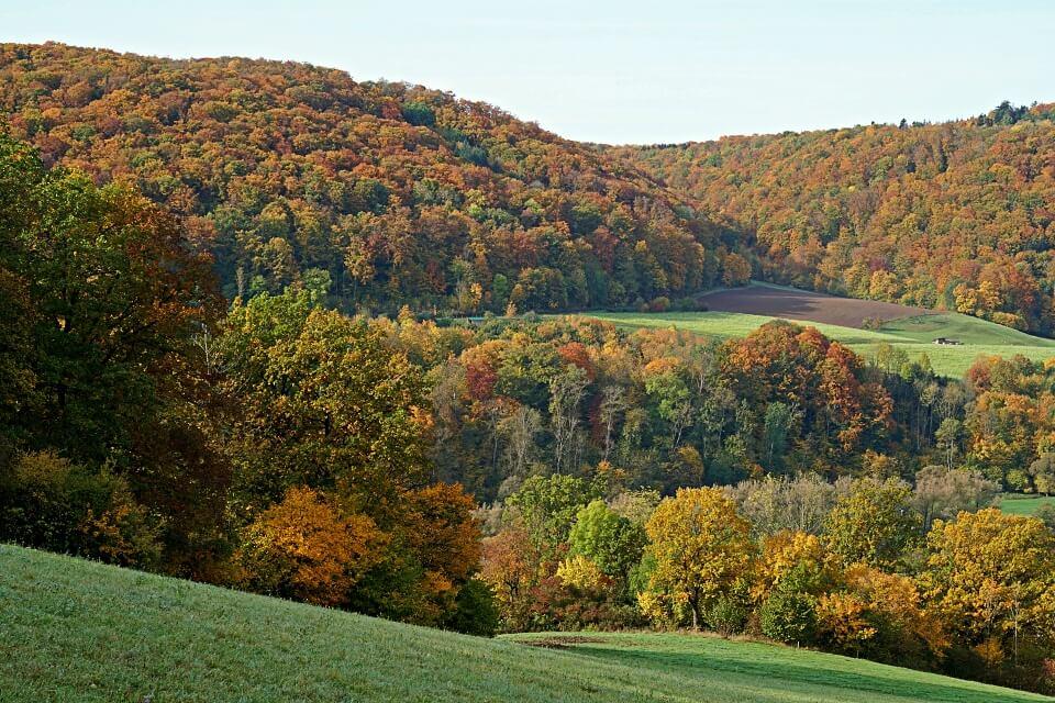 Bunte Herbststimmung im Kochertal bei Steinkirchen in Hohenlohe