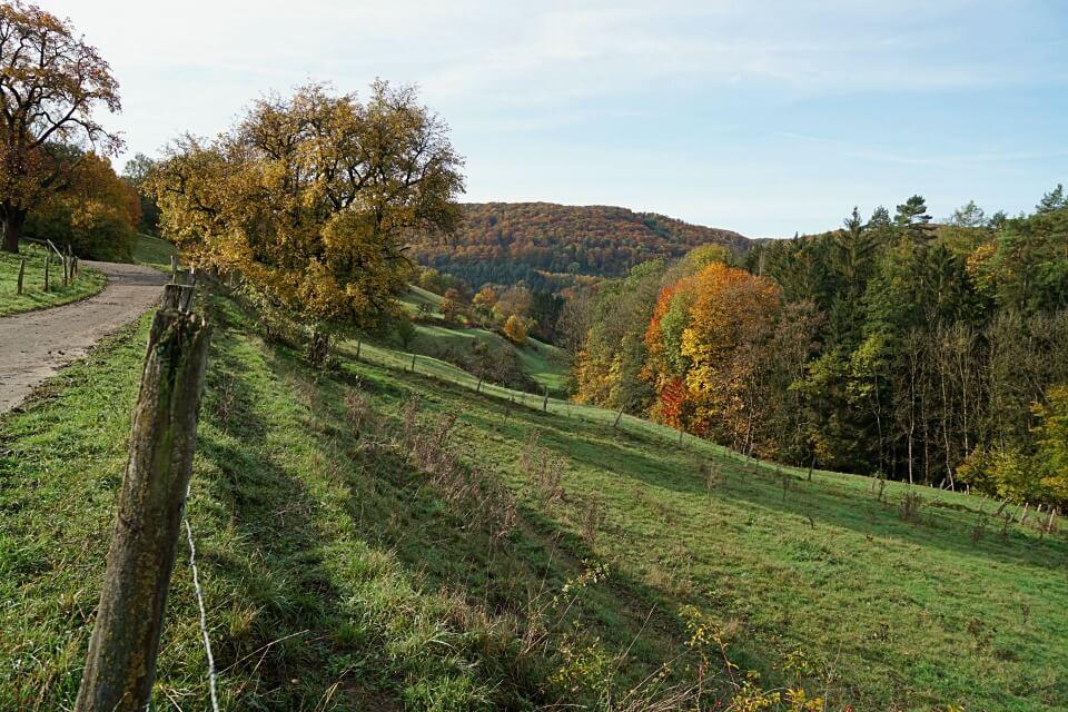 Blick ins Tal unterhalb von Burg Tierberg