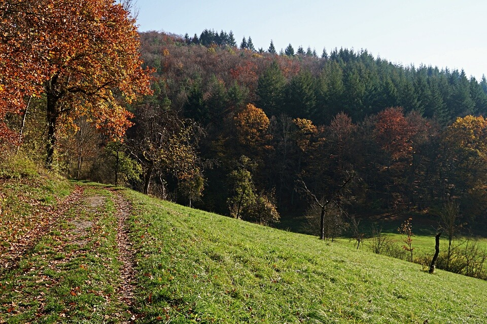 Das Hohenloher Kupfertal im Herbst
