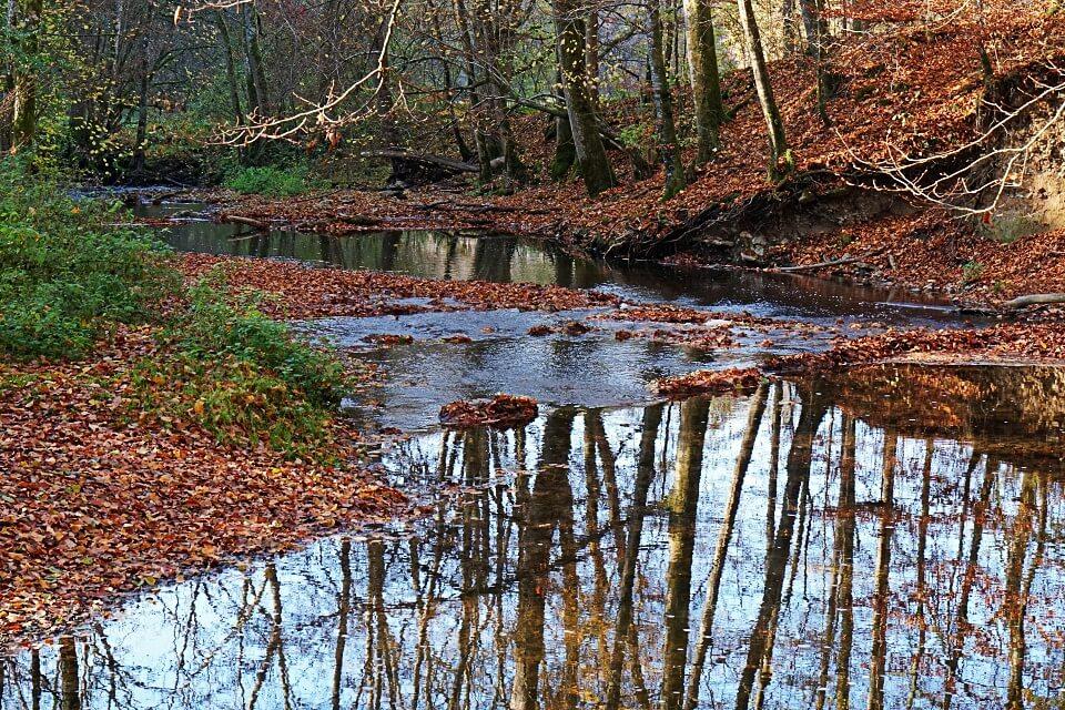 Wandern im Herbst im Kupfertal um Forchtenberg in Hohenlohe