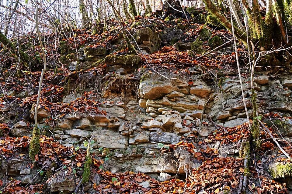 Muschelkalk im Kupfertal