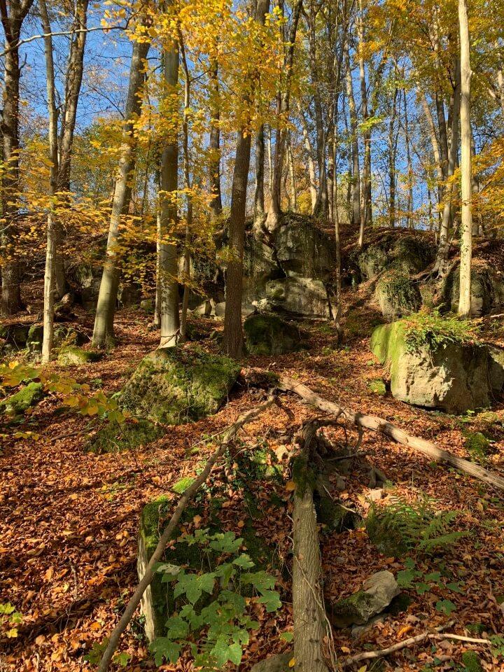 Tolle Schlucht mit Felsen im Mainhardter Wald