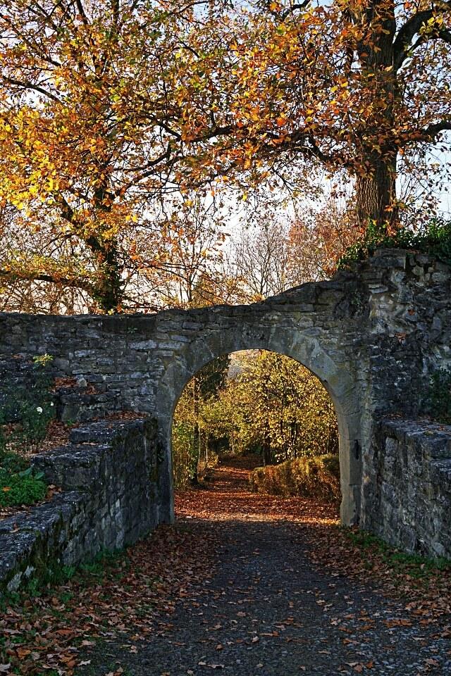 Ruine Forchtenberg im Herbst