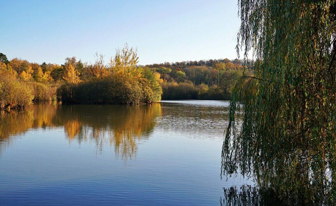 Wanderung im Mainhardter Wald zum Gleichener See in Hohenlohe