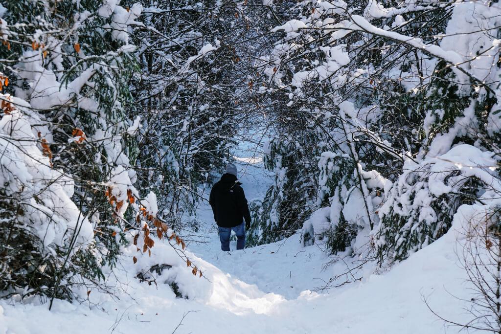 Wandern auf dem Limeswanderweg bei Grosserlach im Schwaebischen Wald