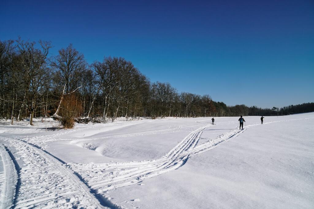 Langlauf Loipen bei Grosserlach im Schwaebischen Wald
