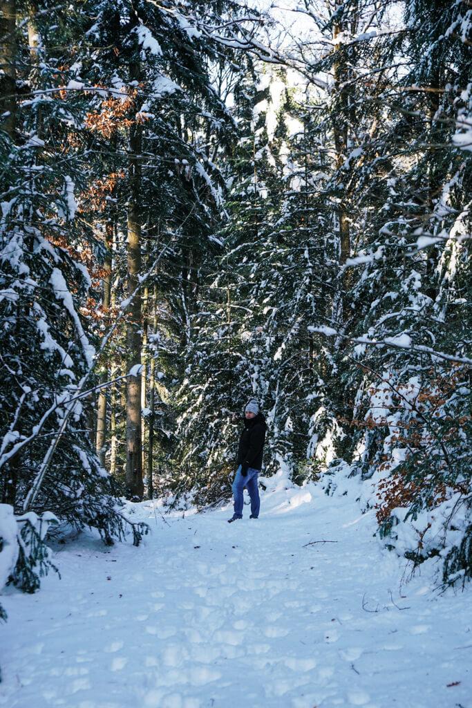 Durch den verschneiten Mainhardter Wald