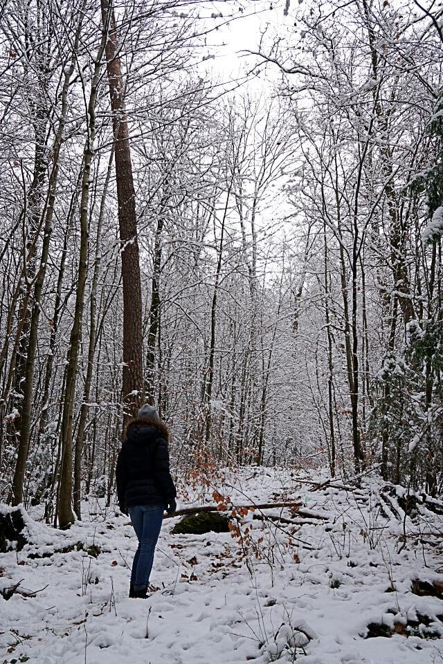 Winter Wandern in Wuestenrot in den Loewensteiner Bergen