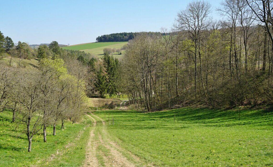 Wandern auf dem Natura Trail im Mittleren Jagsttal ab Krautheim in Hohenlohe