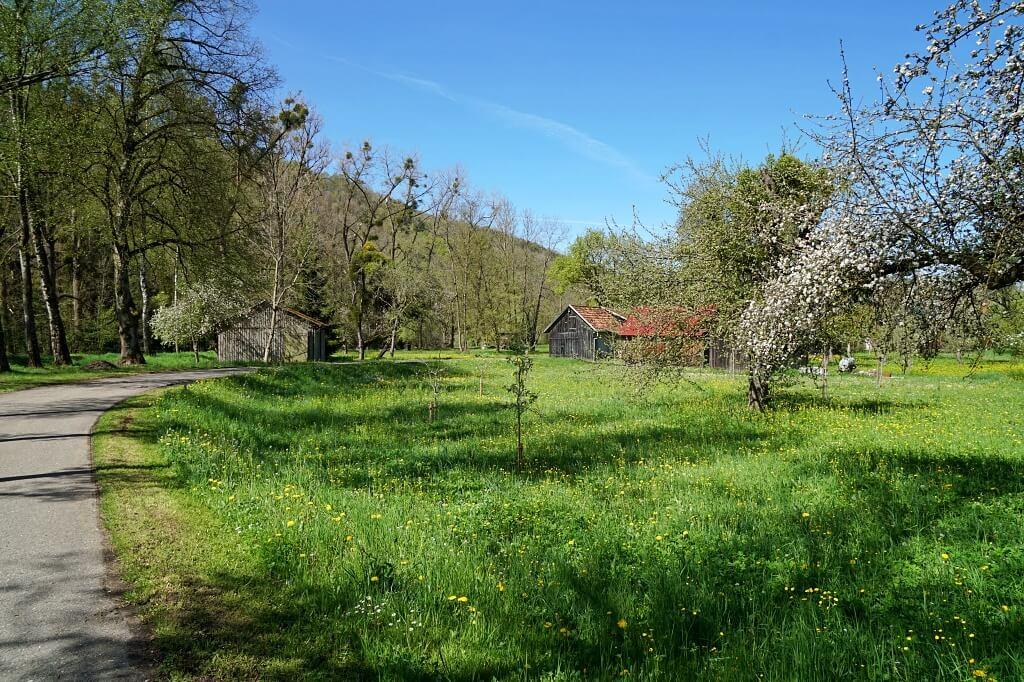 Eberbach auf dem Pfad der Stille Mulfingen