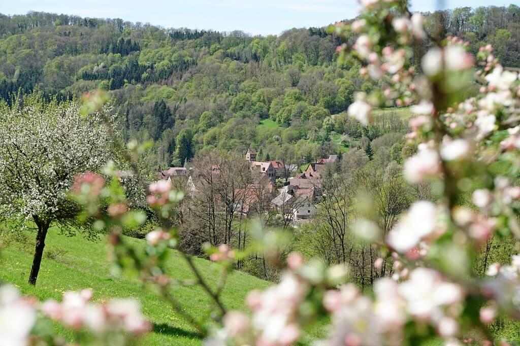 Blick auf Unterregenbach